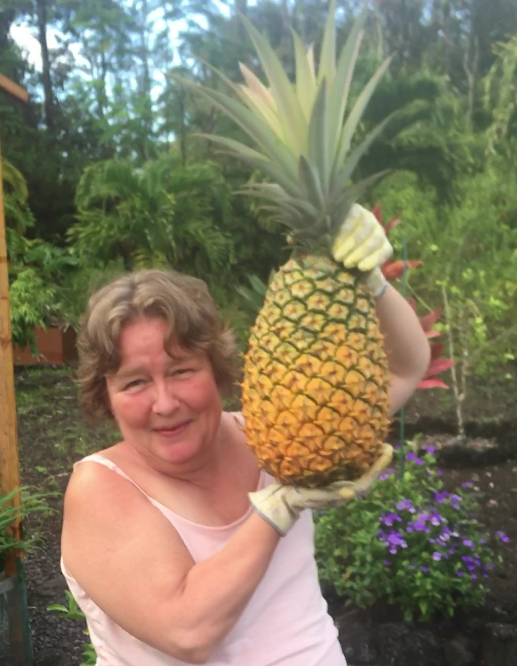 Me pineapple